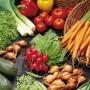 draft_lens1957518module20272402photo_1236805554planting-vegetables-indoors.jpg